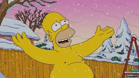 homer snow